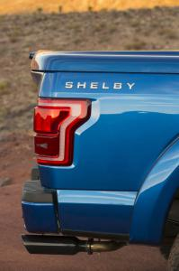 Shelby is back!