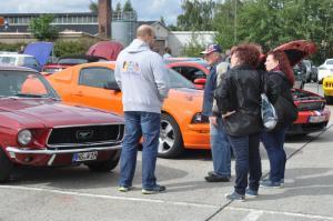 Mustang Meeting Wild Ponies 9.9.2017