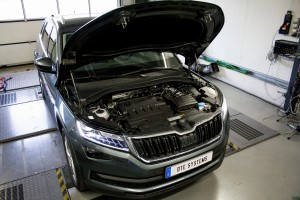 Kodiaq DTE Systems
